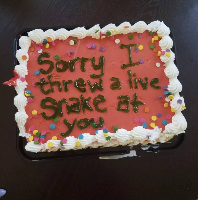 "Cake with ""Sorry I Threw a Live Snake at you"" Written on the front"